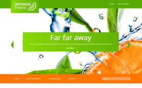 Orange Free WordPress Theme