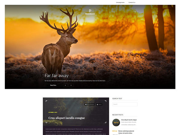Panorama WordPress Theme