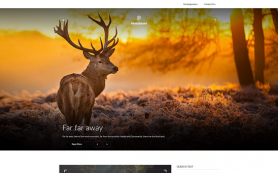 Panorama Free WordPress Theme