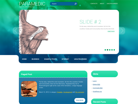 Paramedic WordPress Theme