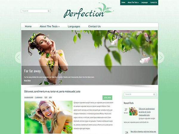 Perfection Free WordPress Theme