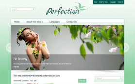 Perfection Free WordPress Theme