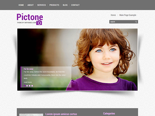 Pictone WordPress Theme