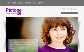 Pictone Free WordPress Theme