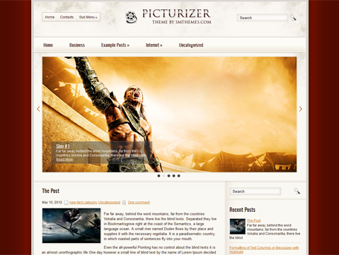Picturizer Free WordPress Theme