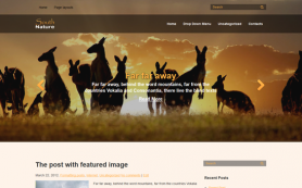 South Free WordPress Theme