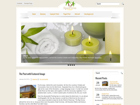 SpaPress WordPress Theme