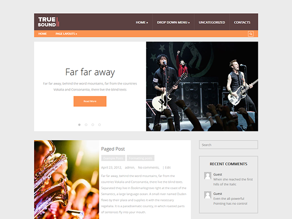 TrueSound WordPress Theme