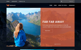 ViewValley Free WordPress Theme