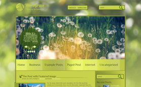 WordGrass Free WordPress Theme