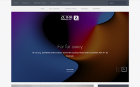 Zetra Free WordPress Theme