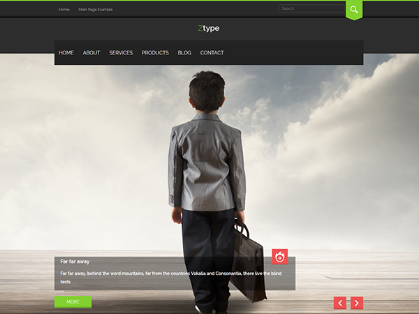 Ztype WordPress Theme