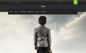 Ztype Free WordPress Theme
